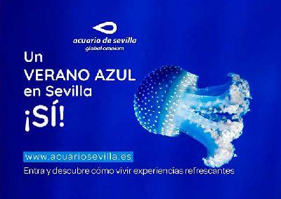 Cartel de las actividades Verano azul en el Acuario de Sevilla
