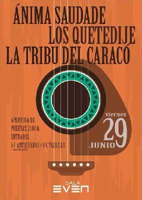 Concierto: Ánima Saudade, Los Quetedije y La Tribu del Caracó en Sevilla