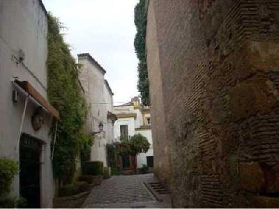 Ruta por la Sevilla pre-Almohade de la Asociación Sevilla Histórica