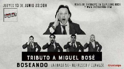 Cartel del concierto de Boseando en la sala Long Rock Sevilla 2019