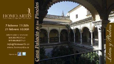 Visita a la Casa de los Pinelo de Sevilla por Homo Artis