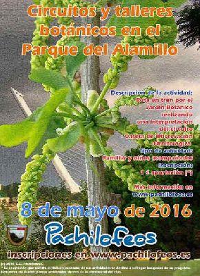 Circuito y talleres botánicos en el parque del Alamillo de Sevilla
