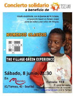 Cartel del concierto a beneficio de Tsehay en Malandar Sevilla 2019