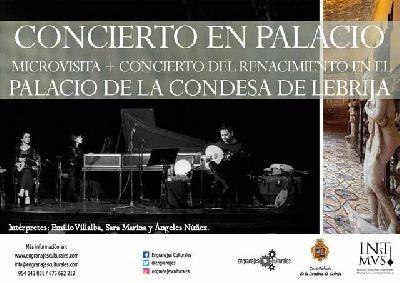 Cartel de la actividad Concierto en palacio en el Palacio de la Condesa de Lebrija de Sevilla