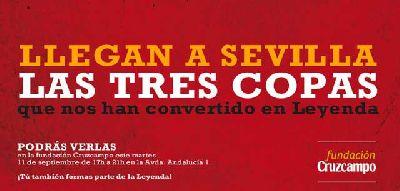 Las copas de la Selección Española en Fundación Cruzcampo Sevilla
