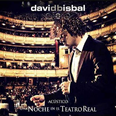 Concierto: David Bisbal en Sevilla 2013