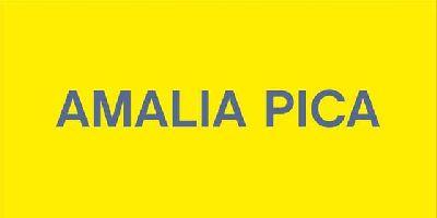 Cartel de la exposición Amalia Pica
