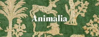Exposición: Animalia en el Museo Artes y Costumbres Populares de Sevilla
