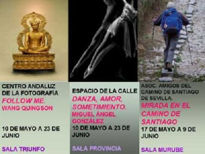 Exposiciones de fotografías en la Casa de la Provincia de Sevilla
