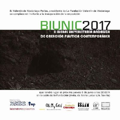 Exposición: BIUNIC 2017 en la Fundación Madariaga Sevilla