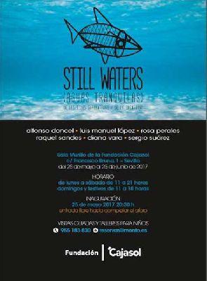 Exposición: Still waters (aguas tranquilas) en Cajasol Sevilla