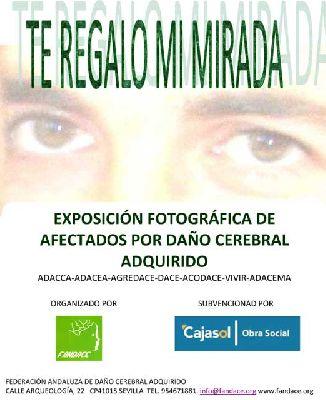 Exposición: 'Te regalo mi mirada' de Fandace en Cajasol Sevilla