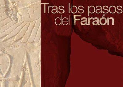 Exposición: Tras los pasos del Faraón en Cajasol Sevilla