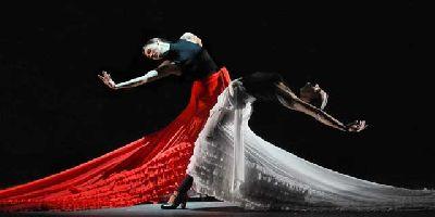 Flamenco hoy de Carlos Saura en Teatro de la Maestranza Sevilla