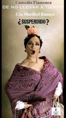 Flamenco: De no llegar a tiempo en la Sala Turina de Sevilla