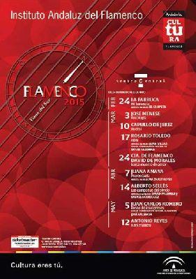 Flamenco Viene del Sur 2015 en el Teatro Central de Sevilla