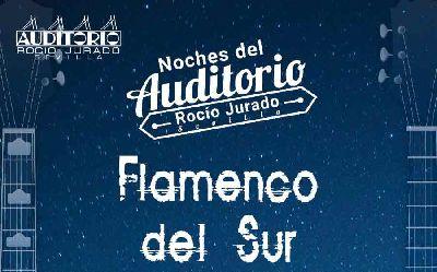 Cartel del ciclo Flamenco del sur en el Auditorio Rocío Jurado de Sevilla 2020
