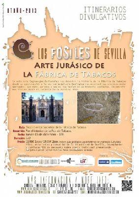 Los fósiles de la Fábrica de Tabacos de Sevilla (diciembre 2013)