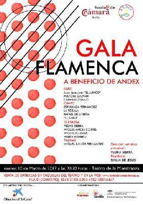 Gala flamenca a beneficio de Andex en el Teatro de la Maestranza de Sevilla