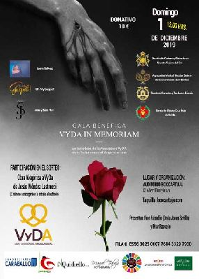 Cartel de la Gala benéfica Vyda in Memorian en Box Cartuja Sevilla 2019