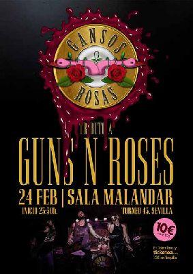 Concierto: Gansos Rosas en Malandar Sevilla (febrero 2018)