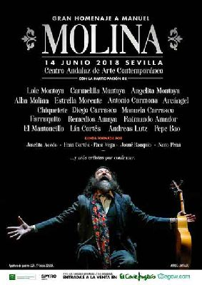 Concierto: Gran Homenaje a Manuel Molina en el CAAC de Sevilla