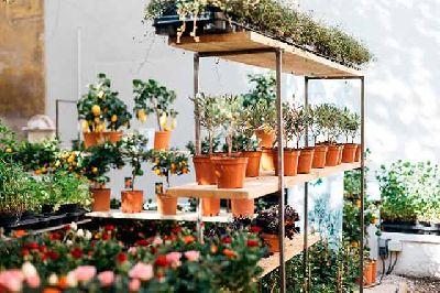 Imagen del jardín efímero de Maison Bouture