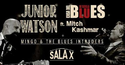 Cartel del concierto de Junior Watson ft. Mitch Kashmar y Mingo & The Blues
