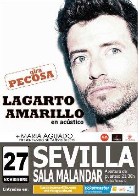 Concierto: Lagarto Amarillo, gira Pecosa en Malandar Sevilla
