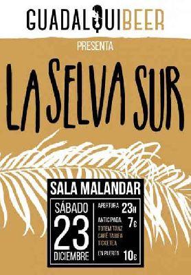 Concierto: La Selva Sur en Malandar Sevilla 2017