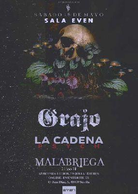 Cartel del concierto de Grajo, Malabriega y La Cadena Psych en la Sala Even Sevilla 2019