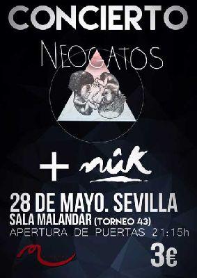 Concierto: Neogatos y Nûk en Malandar Sevilla