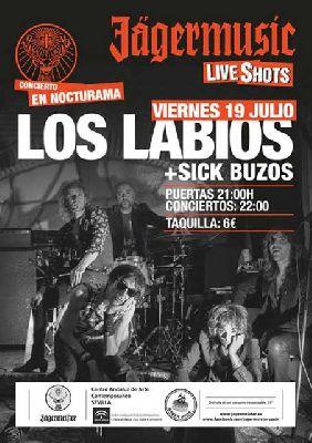 Concierto: Los Labios y Sick Buzos en Nocturama Sevilla 2013