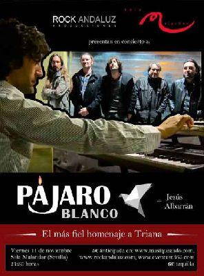 Concierto: Pájaro Blanco y Jesús Albarrán en Malandar Sevilla