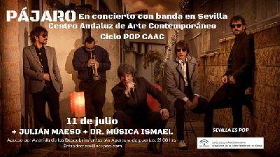 Cartel del concierto de Pájaro y Julián Maeso en Pop CAAC Sevilla 2019