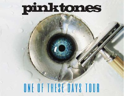 Concierto: Pink Tones (One of these days) en Custom Sevilla