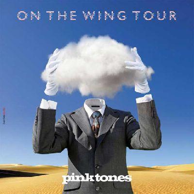 Concierto: Pink Tones (On The Wing Tour 2017) en Espacio Box Sevilla