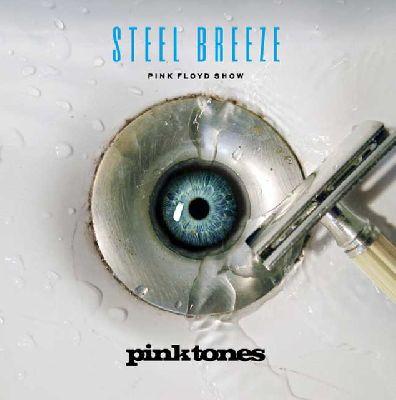 Concierto: Pink Tones (Steel Breeze 2015) en Custom Sevilla