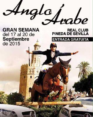 Gran Semana del Caballo Anglo-Árabe en Sevilla 2015