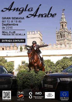 Gran Semana del Caballo Anglo-Árabe en Sevilla 2016