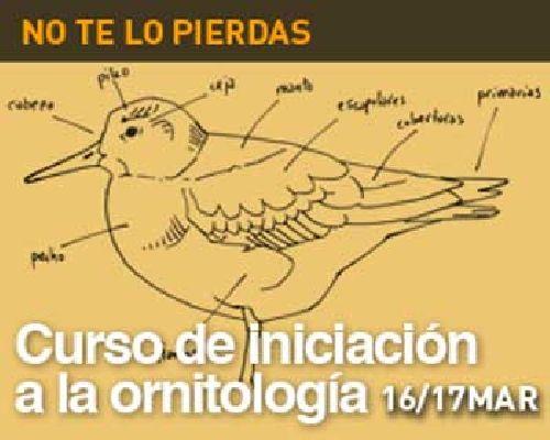 Curso de iniciación a la ornitología en la Casa de la Ciencia