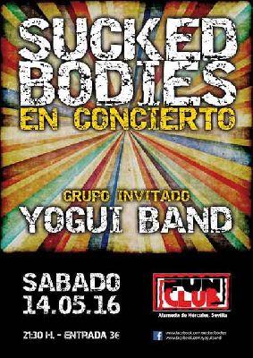 Concierto: Suckedbodies + Yogui Band en FunClub Sevilla (mayo 2016)