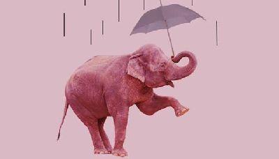 Teatro infantil: 30 elefantes bajo un paraguas en la Sala Cero de Sevilla
