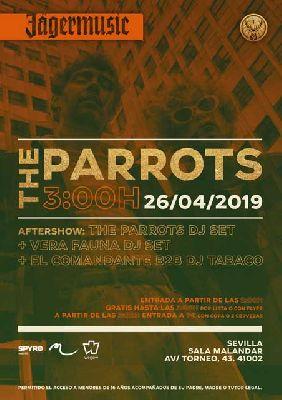 Cartel del concierto The Parrots en Malandar Sevilla 2019