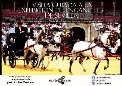Cartel de la visita guiada a la Exhibición de Enganches de Sevilla